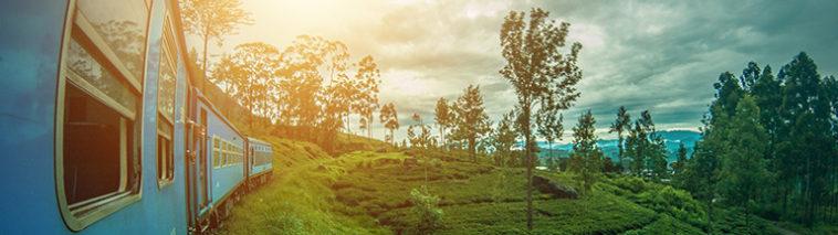 Trein door Sri Lanka