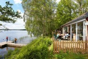 Jungalow in vakantiepark Beekse Bergen